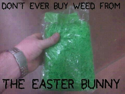 Easter Bunny Weed